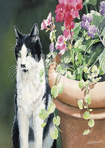 Miss Kitty and Clay Pot-Cat by Susan Bourdet.