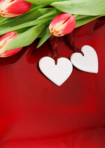 Twin Hearts with Roses, DoorWrap - Door Decoration