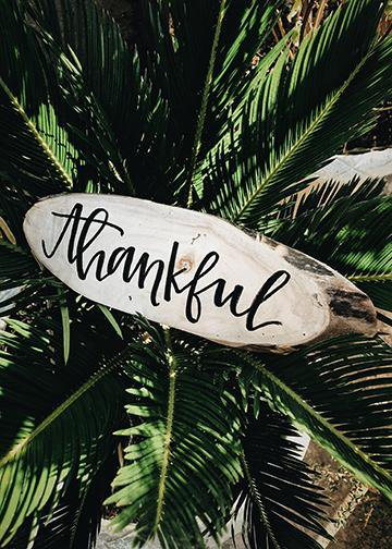 Thankful, DoorWrap - Door Decoration