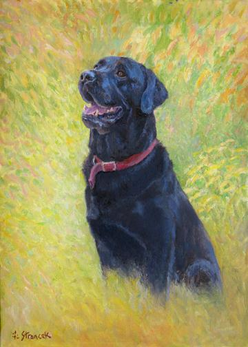 Black Lab Art