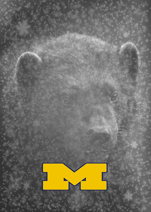 Michigan Door Decoration