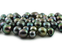 Loose Tahitian Pearls, Multicolor, - AA Quality - Drops (RF 23)