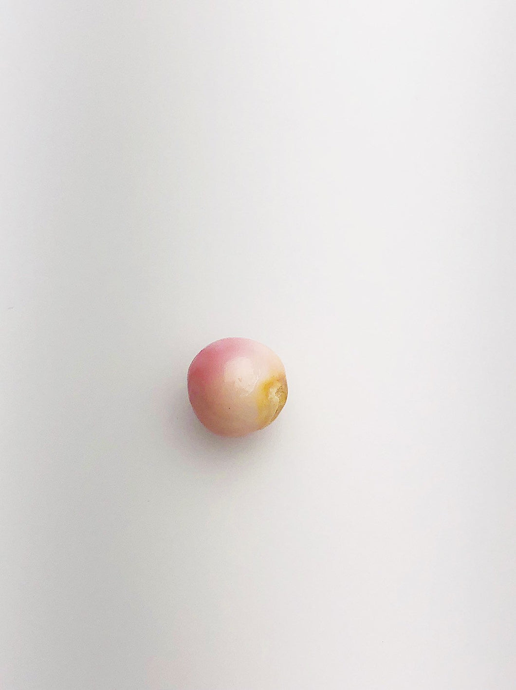 Conch Pearl Loose 9.4mm x 8.0mm No. 8