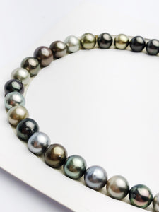 Loose Tahitian Pearls Set, Multicolor, Wholesale - Only 19 dollars per pearl - AA Quality (243)