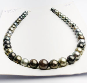 Loose Tahitian Pearls Set, Multicolor, Wholesale - Only 17 dollars per pearl - AA Quality (242)