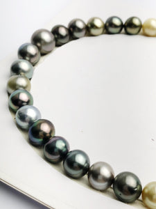 Loose Tahitian Pearls Set, Multicolor, Wholesale - Only 18 dollars per pearl - AA Quality (241)
