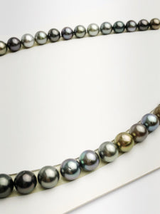 Loose Tahitian Pearls Set, Multicolor, Wholesale - Only 19 dollars per pearl - AA Quality (238)
