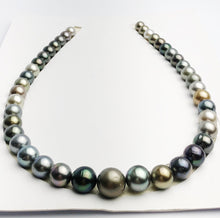Loose Tahitian Pearls Set, Multicolor, Wholesale - Only 18 per pearl - AA Quality (233)