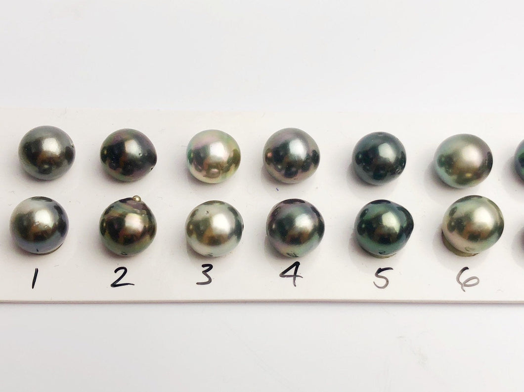 10-10.5mm Tahitian AA Loose Matched Pearls, 10mm Semi-Round (204)