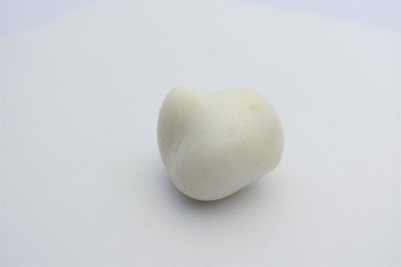 Natural White Tridacna Pearl 38mm x 34mm x 26mm GIA certified