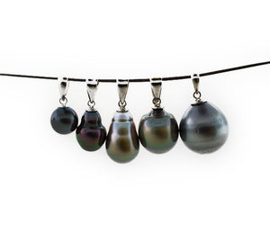 Tahitian Pearl Pendant on Sterling Silver
