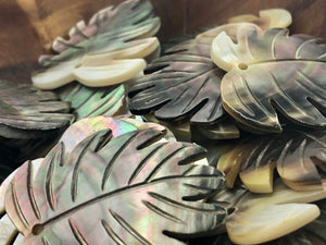 Black Tahitian Mother Of Pearl Monstera Sku#M299