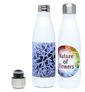 Designer Water Bottles