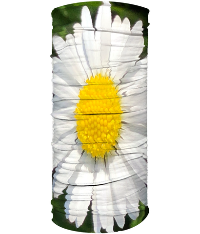 Daisy Flower Neck Gaiter (Double Sided) - Nature of Flowers