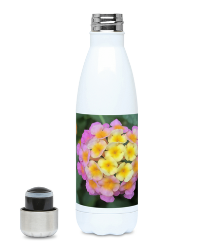 """The Rainbow Effect in Bloom"" Yellow Orange Pink Flower 500ml Water Bottle - Nature of Flowers"