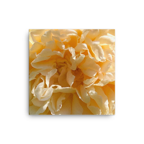 """The Internal Senses"" Orange Flower Canvas - Nature of Flowers"