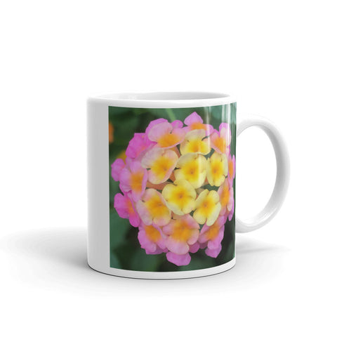 """The Rainbow Effect in Bloom"" Yellow Orange Pink Flower Glossy Mug - Nature of Flowers"