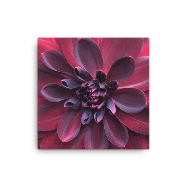 """Into the Darkest Shades"" Purple Red Flower Canvas - Nature of Flowers"