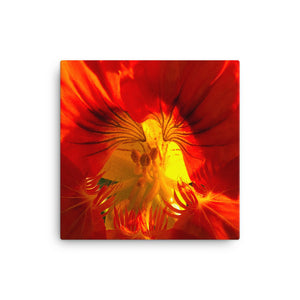 """A Very Close Look Inside"" Red Orange Flower Canvas - Nature of Flowers"