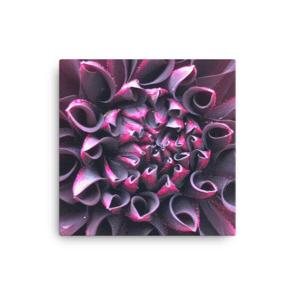 """Even in Darkness there is still light"" Purple Flower Canvas - Nature of Flowers"