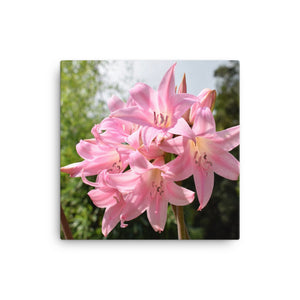 "Open image in slideshow, ""Pink Lily"" Pink Flower Canvas - Nature of Flowers"