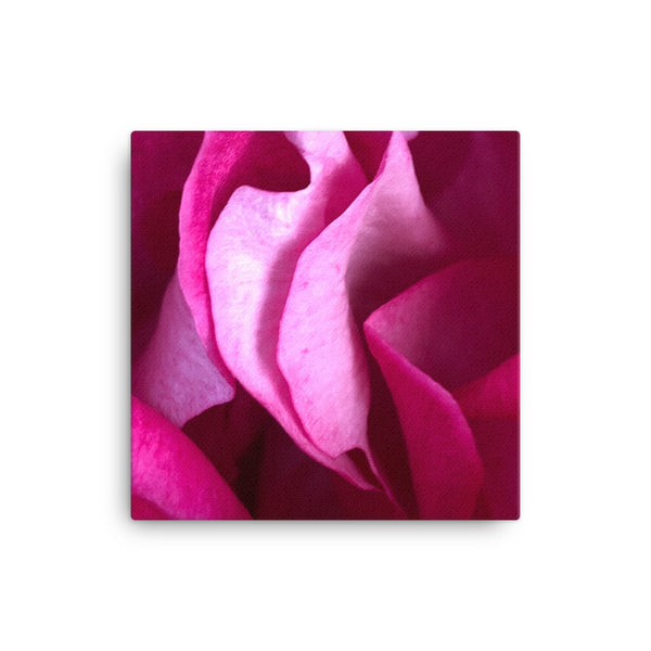 """Almost too close"" Pink and Purple Flower Canvas - Nature of Flowers"