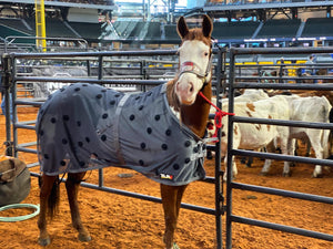 NFR QUALIFIER BRITTNEY BARNETT AND PAINT STICK WEARING XLR8 VELOCITY SHEET AT WNFR