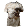 3D printed Bighorn Sheep Clothes