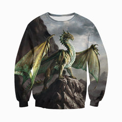 3D All Over Printed Dragon Shirts and Shorts