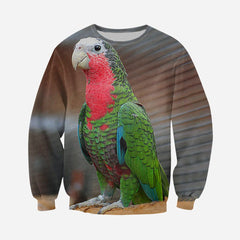 3D All Over Printed Cuban Parrot Shirts And Shorts