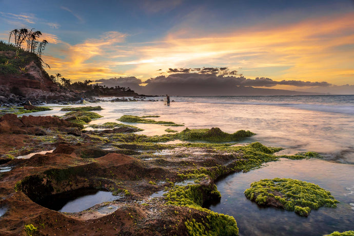 Fishing in Maui - Francesco Emanuele Carucci Photography