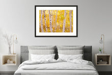 Load image into Gallery viewer, Golden Trees Limited Edition Print