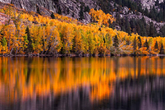 June Lake Limited Edition Print