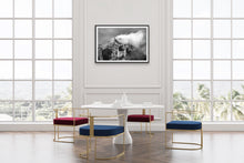 Load image into Gallery viewer, Seguret Limited Edition Print
