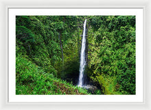 Load image into Gallery viewer, Akaka Falls - Francesco Emanuele Carucci Photography