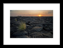 Load image into Gallery viewer, Black Ocean Limited Edition Print