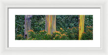 Load image into Gallery viewer, Three Rainbows - Francesco Emanuele Carucci Photography