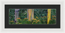 Load image into Gallery viewer, Three Rainbows Limited Edition Print