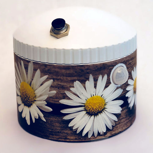 DecoWrap - Daisies on old board