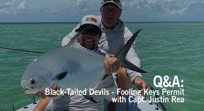 Q/A: Black Tailed Devils – Capt. Justin Rea on Fooling Keys Permit