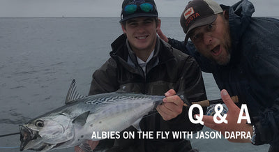 Q & A: Albies On The Fly - with Jason Dapra