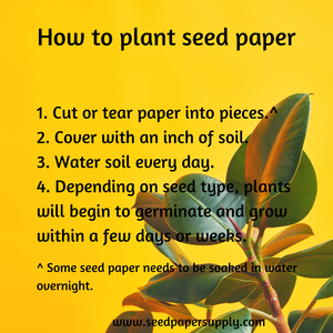 How Do You Plant Seed Paper?