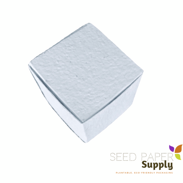Seed Paper Cube Boxes
