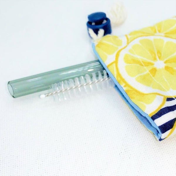 Glass Straw Set and Utensil Bag