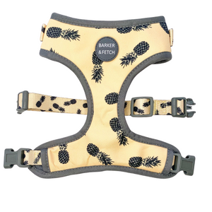 Pina Colada Adjustable Harness