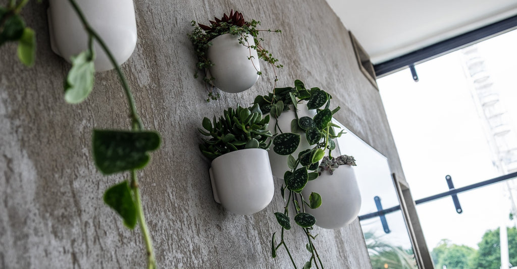 Artificial Plants, Artificial Trailing Plants, Plant Wall
