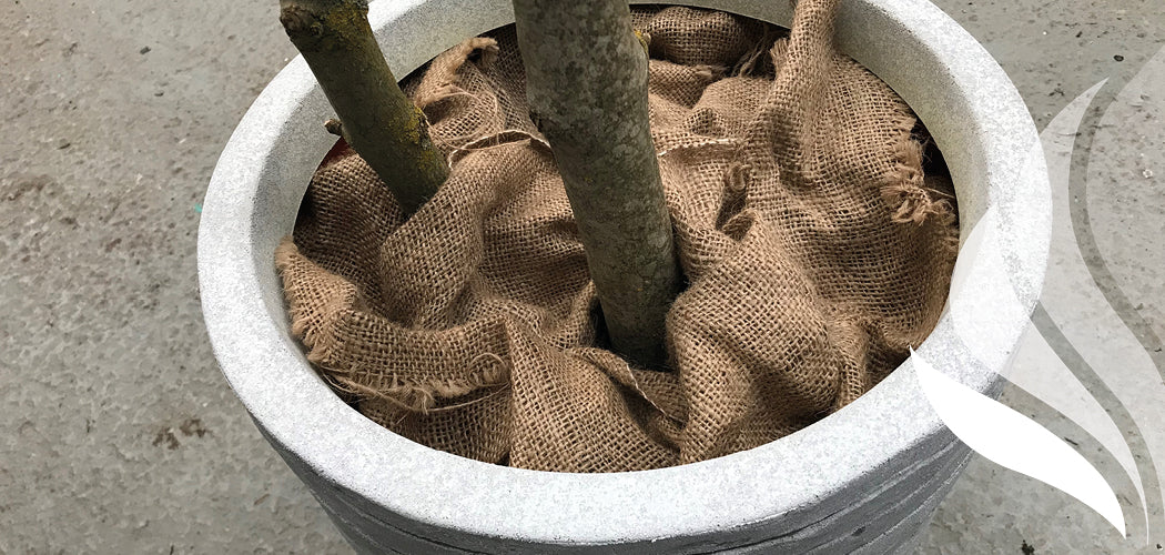 Ascott - hessian potting up for artificial tree