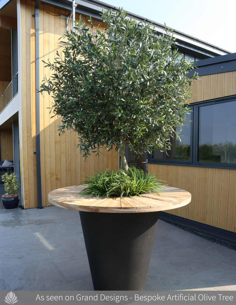 Grand Designs Bespoke Olive Tree