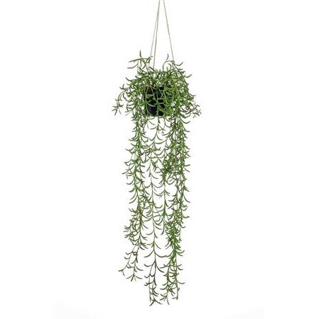 Artificial Plant - Senecio Hanging Bush