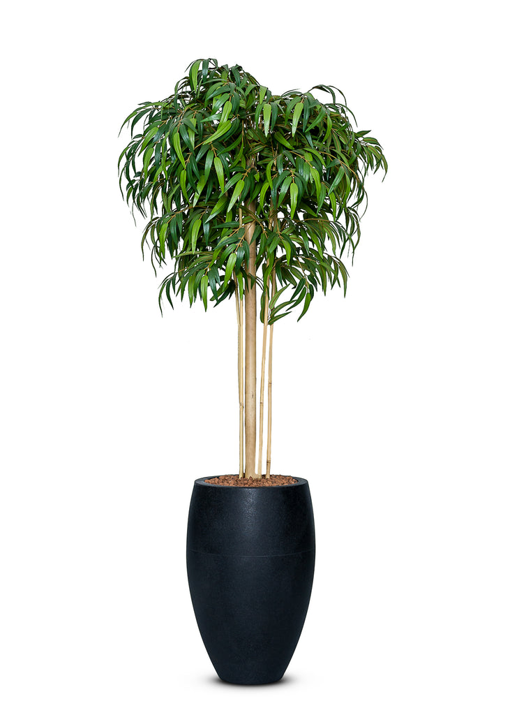 Artificial Bamboo Mophead Tree